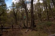 14-10-20_honeymoon-day-8_hiking-kika-area-miramas-canopy-tour-113