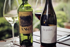 Anko became our next new love – it's a Torrontes white wine, grown in Salta, Argentina and it was DELICIOUS. We may have brought 6 bottles back home with us…
